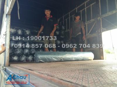 dịch vụ vận tải đi Đà Nẵng giá rẻ uy tín
